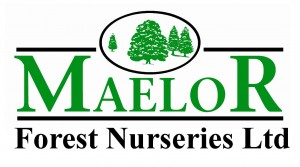 Maelor logo crop